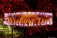 """""""Whishing Tree"""""""