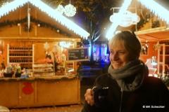 Christmas Garden in der Wilhelma Stuttgart