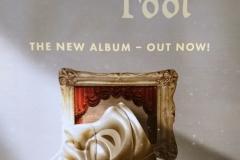 "Das neue Joe Jackson Album ""Fool"" erschien am 18. Januar 2019"