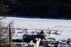 White-Turf_2019-02-17 12.02.25