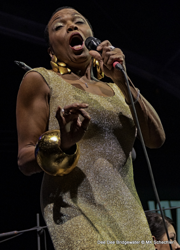 Dee Dee Bridgewater! Stuttgart, 2013