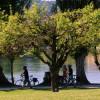 ARCD: Fahrrad-Wissen zum Start in die Zweirad-Saison