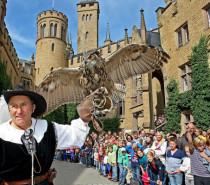 Falkner-Wochenende auf der Burg Hohenzollern
