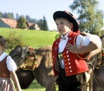 Alpabfahrten im Appenzellerland