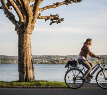 AktivGlück & NaturSchönheit: Radfahren ab Konstanz