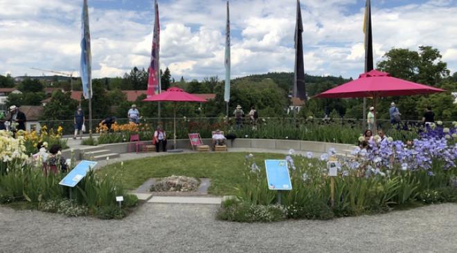 Landesgartenschau Überlingen – der Iris-Farbkreis in den Rosenobelgärten blüht