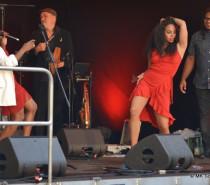 """""""Tony Martinez & The Cuban Power"""". Latin-Jazz bei den Höri Musiktagen"""