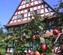 Erntedank im Freilichtmuseum Neuhausen ob Eck