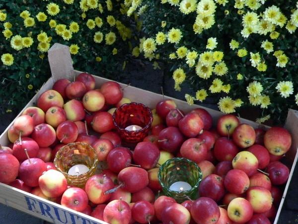 """Äpfel und Teelichte: Eine herbstliche """"Deko-Liaison"""" Frische Äpfel sind der. Deko-Klassiker im Herbst. Zusammen mit Teelichten in RAL-Qualität, die in farbigen Gläschen leuchten, wird das knackige Obst zu einem originellen Deko-Accessoire. Foto: Gütegemeinschaft Kerzen"""